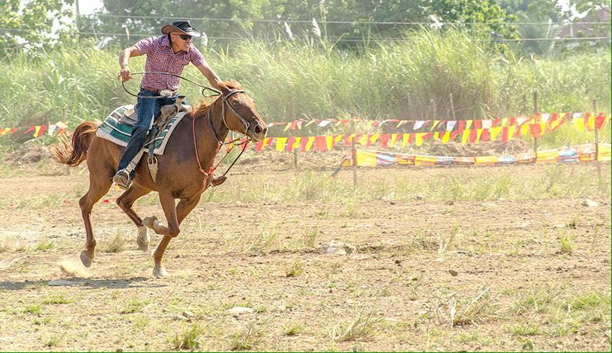 cowboy festival 2015