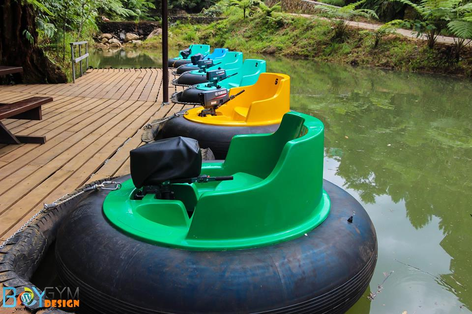 Bumper Boats Side View