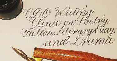 2016 cdo writing clinic