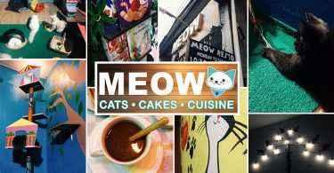 meow resto cdo