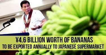 banana-to-japan