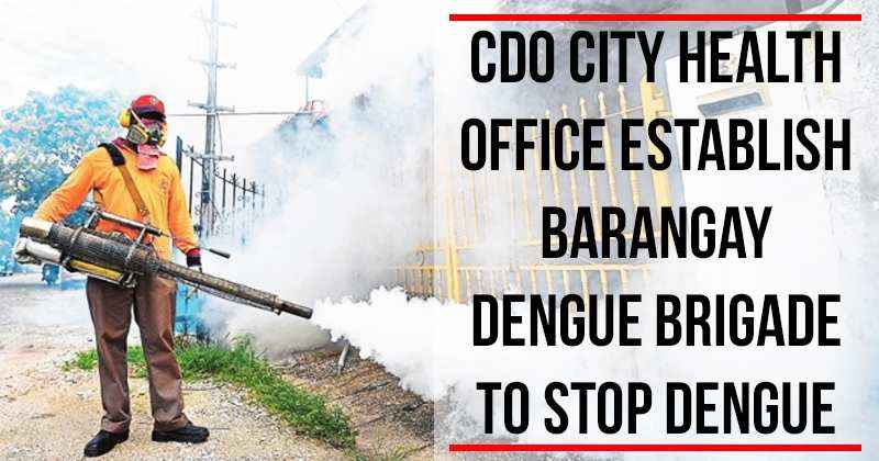 cdo-cho-anti-dengue