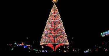 tallest christmas tree tagum