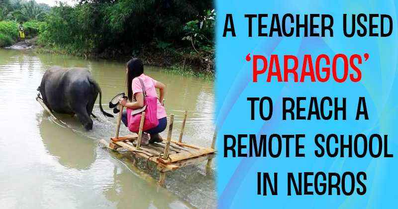 teacher-used-paragos-to-reach-remote-school