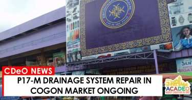 drainage system repair in Cogon Market