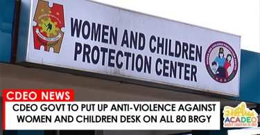 anti violence against women and children desk
