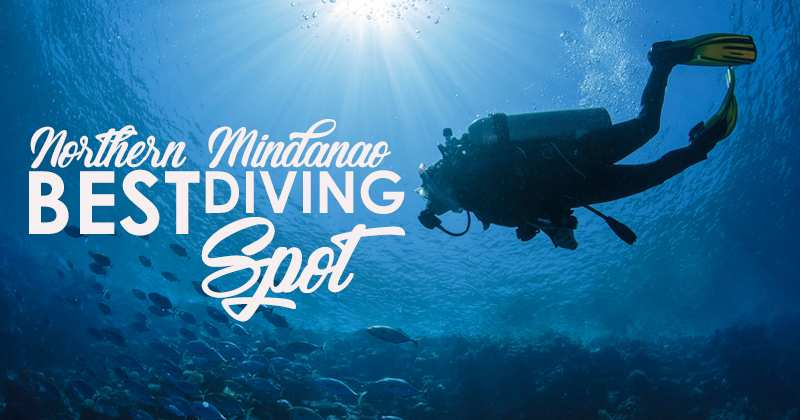 diving spots in north min