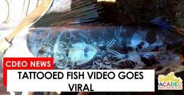 tattoed fish in MisOcc