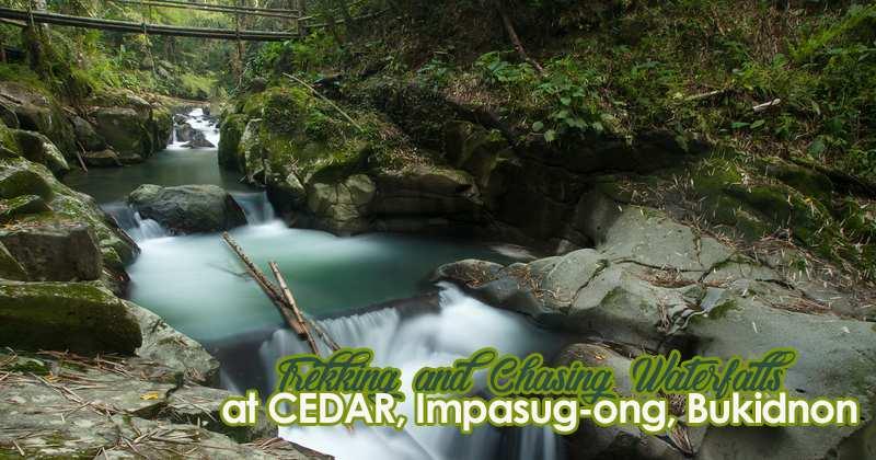 Cedar waterfalls