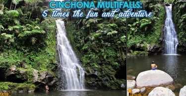Cinchona Multifalls
