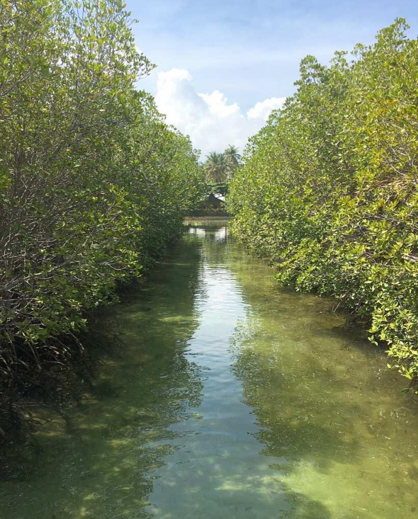 Tubajon aqua marine water park
