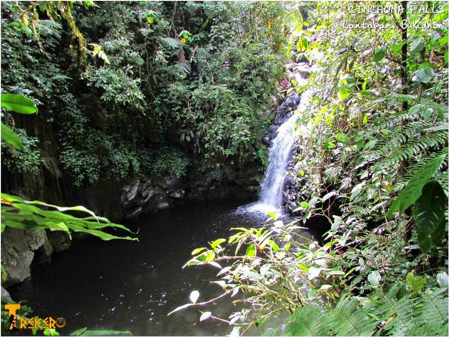 Cinchona Waterfalls 4