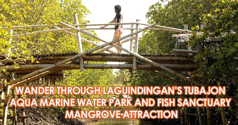 Wander through the tubajon aqua marine water park and fish sanctuary