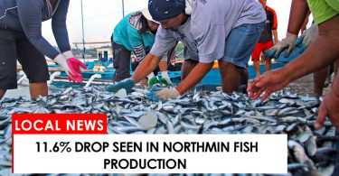 11.6% drop seen in NorthMin fish production