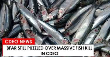 BFAR still puzzled over massive fish kill in CdeO