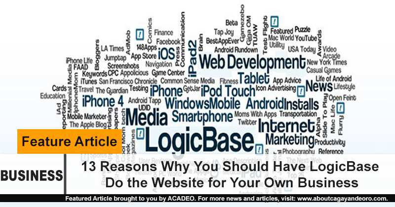 13 reasons why you should have LBI do your website for your business
