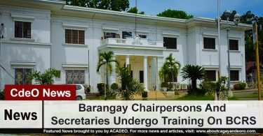 Barangay Chairpersons And Secretaries Undergo Training On BCRS