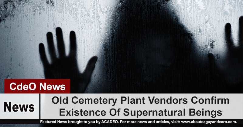 Old Cemetery Plant Vendors Confirm Existence Of Supernatural Beings