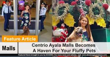 Centrio Ayala Malls Becomes A Haven For Your Fluffy Pets