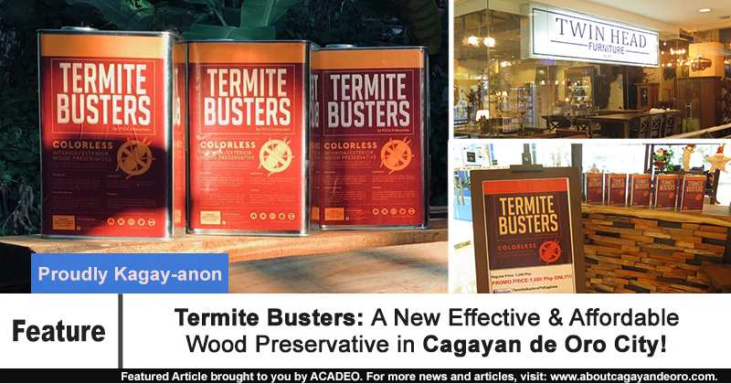 Termite Busters