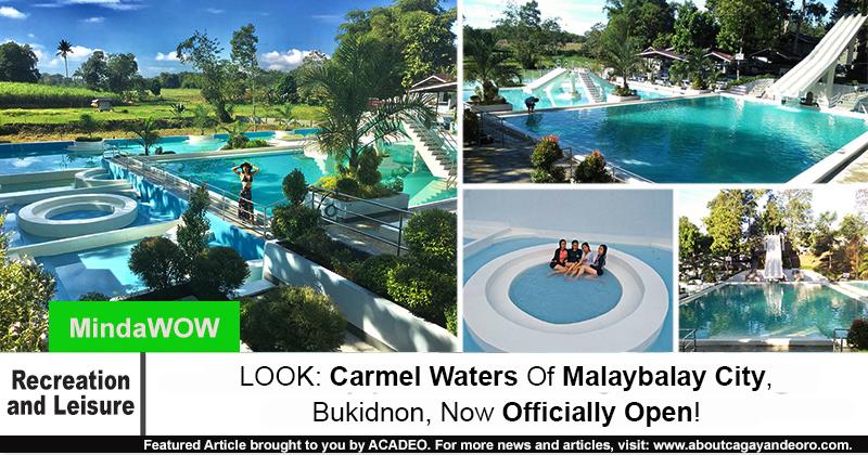 Carmel Waters