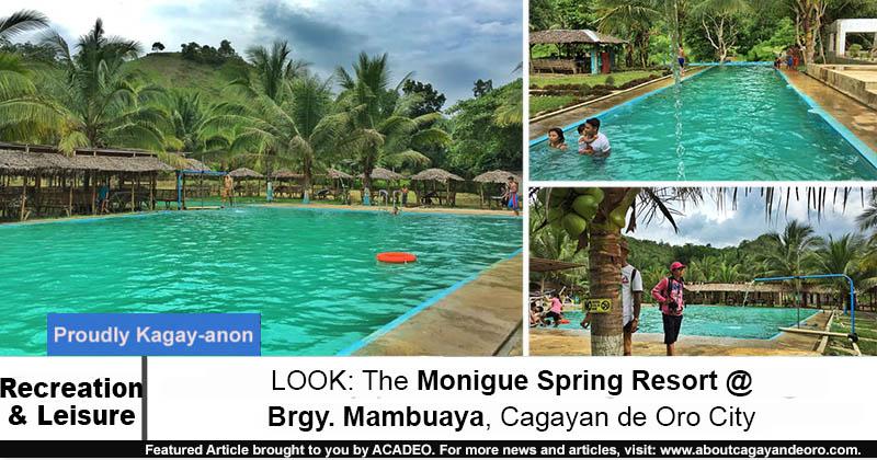 Monigue Spring Resort