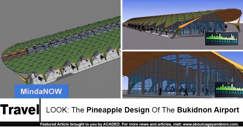 Bukidnon Airport