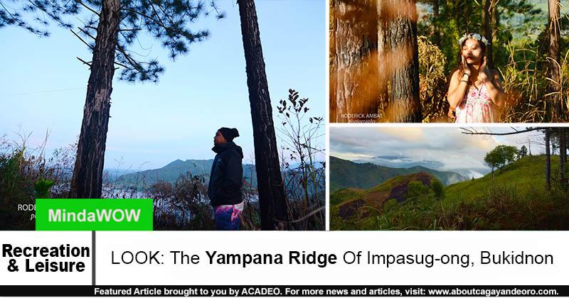 Yampana Ridge