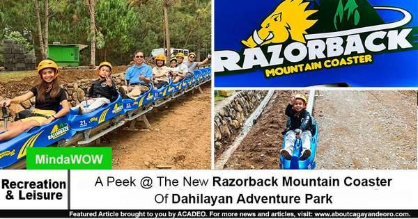 Razorback Mountain Coaster