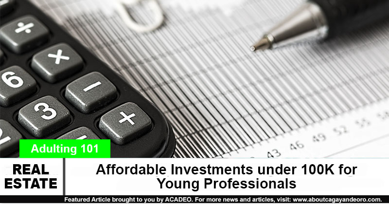 Affordable Investments under 100K for Young Professionals