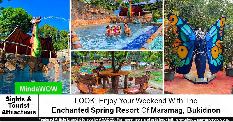 Enchanted Spring Resort