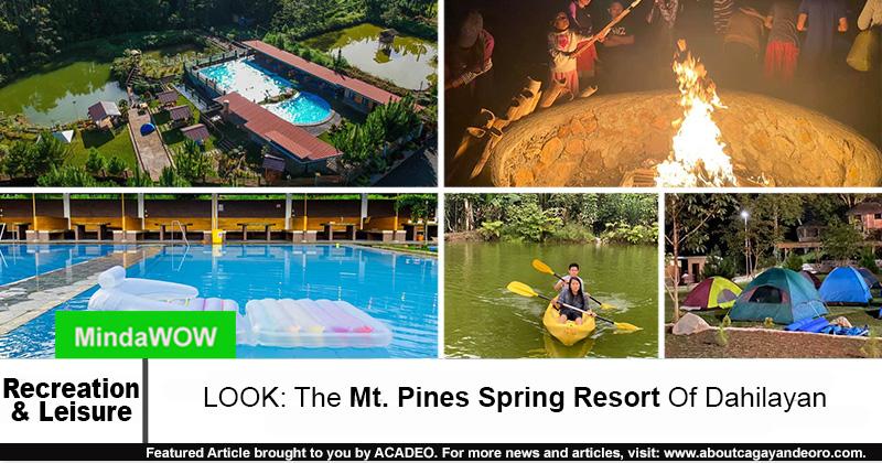 Mt. Pines Spring Resort