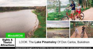 Lake Pinamaloy