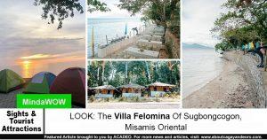 Villa Felomina