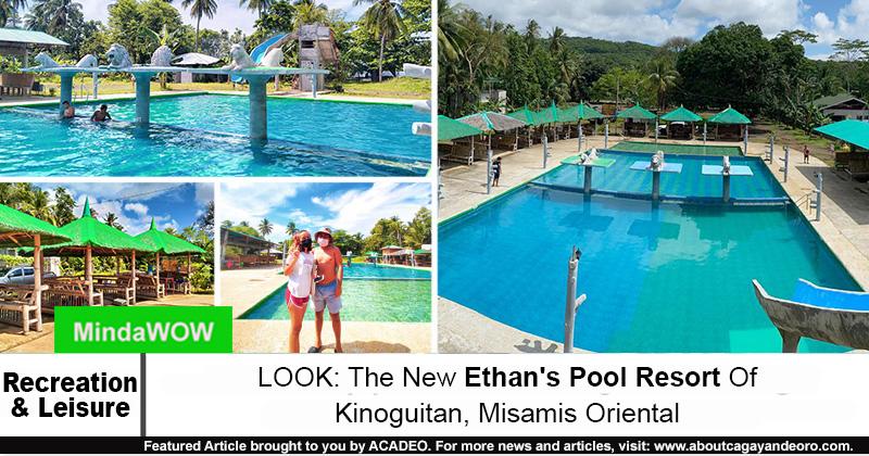 Ethan's Pool Resort