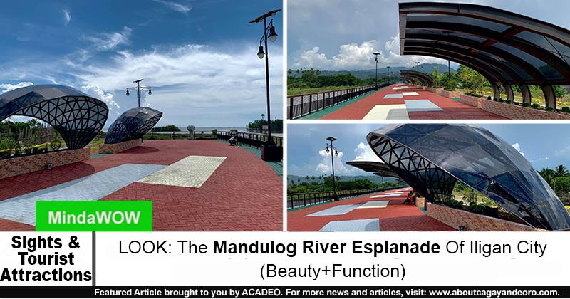 Mandulog River Esplanade