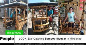 bamboo sidecar