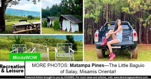 Matampa Pines
