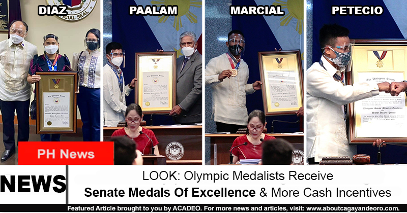 Senate Medals Of Excellence
