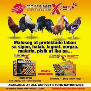 avian influenza panamox